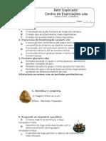 1.1 - As Primeiras Sociedades Recolectoras - Ficha 4
