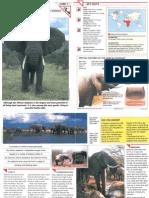 Wildlife Fact File - Mammals - Pgs. 1-10