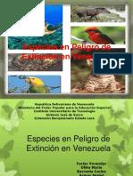 Especies en Peligro de Extincion en Venezuela.