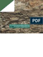 Aportes a una política forestal argentina en el siglo XXI