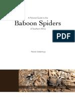 spider book teaser