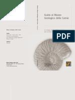 guida museo geologico carnia