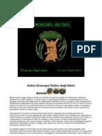 Antico oroscopo celtico degli alberi