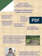 Seguridad alimentaria y agricultura familiar.ppt