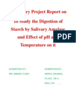 Chemistry Project Report On