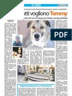 Articolo Senzacolonne 20 gennaio 2013
