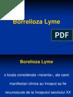 87481470-borelioza-lyme-26-mar-2012-69556