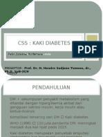 CSS vaskuler