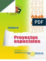 Catálogo de Proyectos Especiales 2013