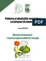 Biomasa Plante Energetice