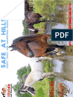 Hillside Animal Sanctuary Newsletter (Autumn/Winter 2012)