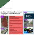 Karehana Park Stream Enhancement