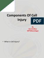 CELL INJURY PATHOLOGY
