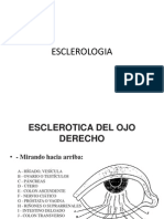ESCLEROLOGIA