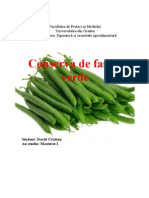 Conserva de fasole verde