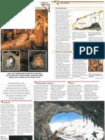 Wildlife Fact File - North American Habitats - Pgs. 11-20