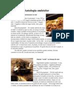 Antologia omletelor