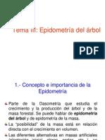 Epidometria Del Arbol