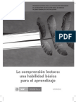 comprensionLECTORA.pdf