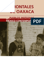 Chontales Oaxaca(1)