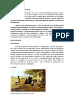 História da cidade de São Paulo.docx