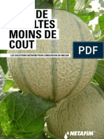 Fiche Culture Melon