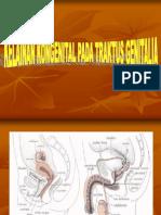 77104565-Kelainan-Kongenital-Pada-Traktus-Genital.ppt