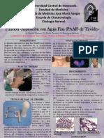 Poster PAAF Tiroides.ppt