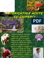 Intoxicaţii acute cu ciuperci