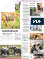 Wildlife Fact File - Animal Behavior - Pgs. 11-20