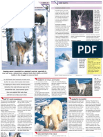 Wildlife Fact File - Animal Behavior - Pgs. 21-30