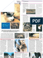 Wildlife Fact File - Animal Behavior - Pgs. 51-60