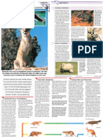 Wildlife Fact File - Animal Behavior - Pgs. 81-90