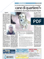 Articolo Senzacolonne 22 gennaio 2013
