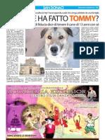 Articolo Senzacolonne 23 gennaio 2013