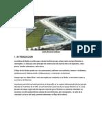 INFORME DE PRACTICA FLUJO MEDIANTE FLOTANTE.docx