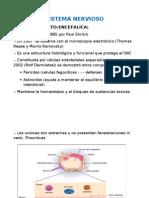 Fisiologia Sistema Nerviso II