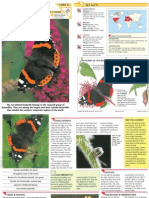 Wildlife Fact File - Insects & Spiders - Pgs. 31-40