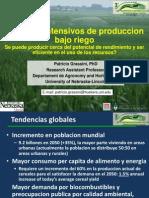 INTA Sistemas Intensivos de Produccion Bajo Riego - Grassini P