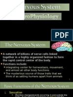 Neurophysiology First Lecture