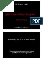 Sectional Human Anatomy2