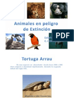 Animales en Peligro de Exticion Copy