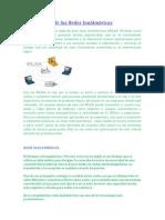 laevolucindelasredesinalmbricas-110221231414-phpapp02