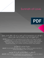 Sunnah of Love