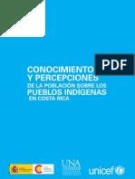 Cr Pub Percepciones Pueblos Ind