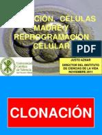 Celulas Madre y Reprogramacion Celular2013