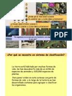 Teorica Clasificación 2012