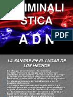criminalistica2-100213182643-phpapp02