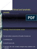 Pathology of Blood and Lymphatic Vessels