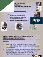 Proceso Salud Ocupacional